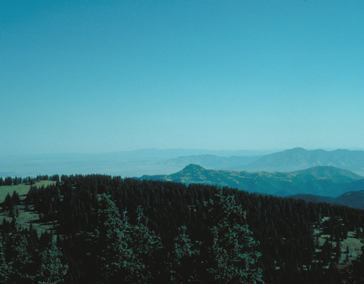 A tree covered ridge is in sharp relief against a hazy blue background of still more ridges.